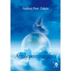 Anioły przeznaczenia, wersja elektroniczna, A. P. Załęski