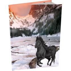 Notes Czarny koń