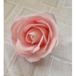 Róża mydlana duża, różowa