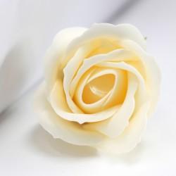 Róża mydlana duża kość słoniowa